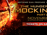 Mockingjay II